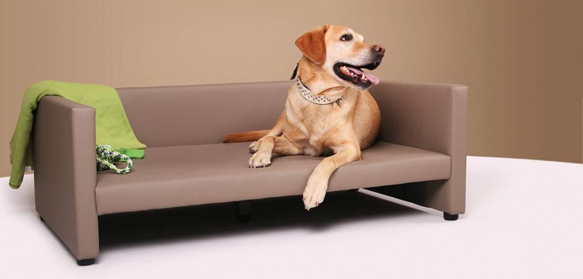 Hundesofa aus Kunstleder - Jacks Hundebett