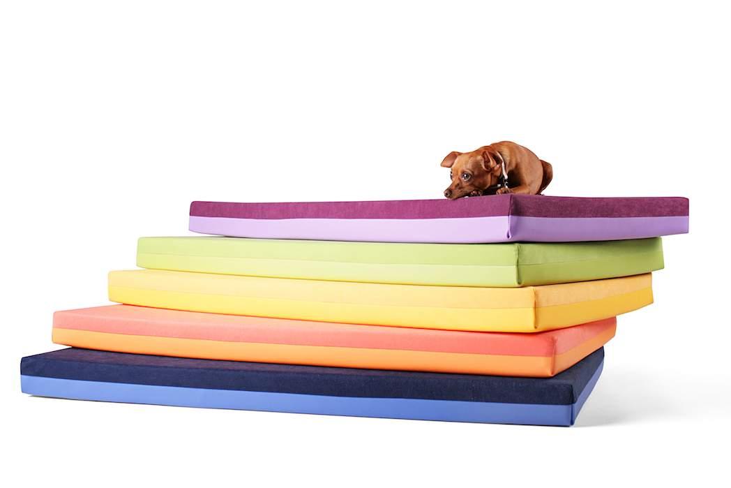 Spielmatte für Hunde